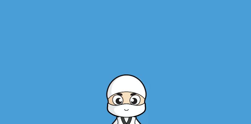 Free Security Ninja